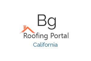 BG Lester Roofing