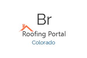 Brandon Young Roofing/Masonry