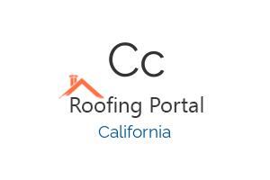 CCS Roof Leak & Repair Experts
